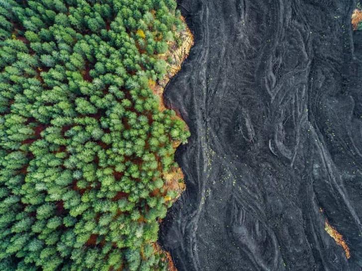 Лучшие фотографии природы National Geographic 2017