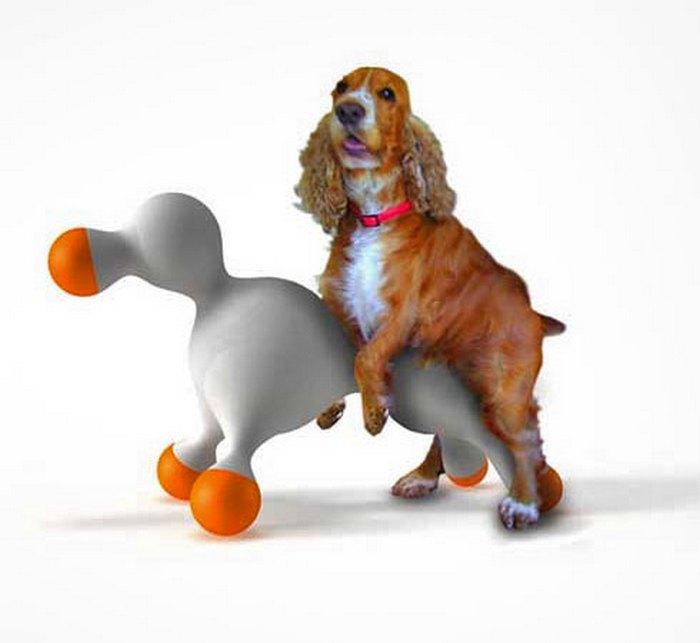 9 странных аксессуаров для собак, на которые стоит обратить внимание любящим хозяевам