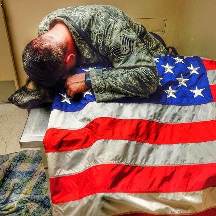 Солдат остался рядом сосвоим псом досамого конца