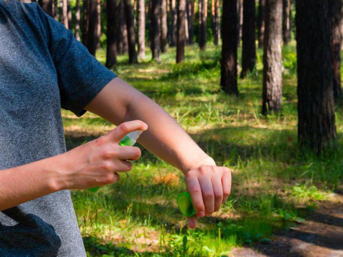 13 способов использования масла чайного дерева