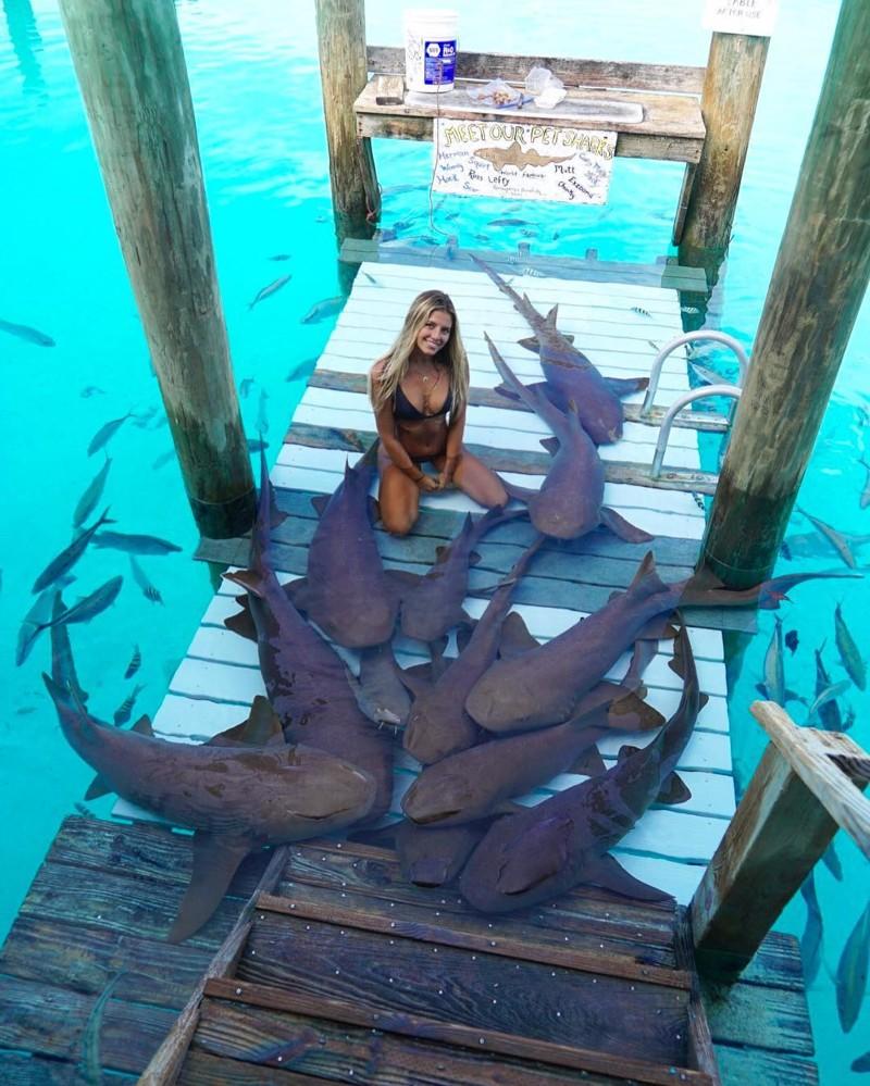 Студентка, которая путешествует помиру, чтобы сфотографироваться сневероятными морскими существами