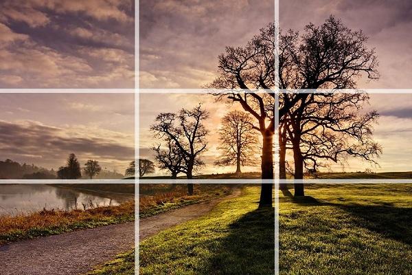15 простых правил съемки, которые сделают из тебя бога фотографии. Всё, что нужно, — мобильник!