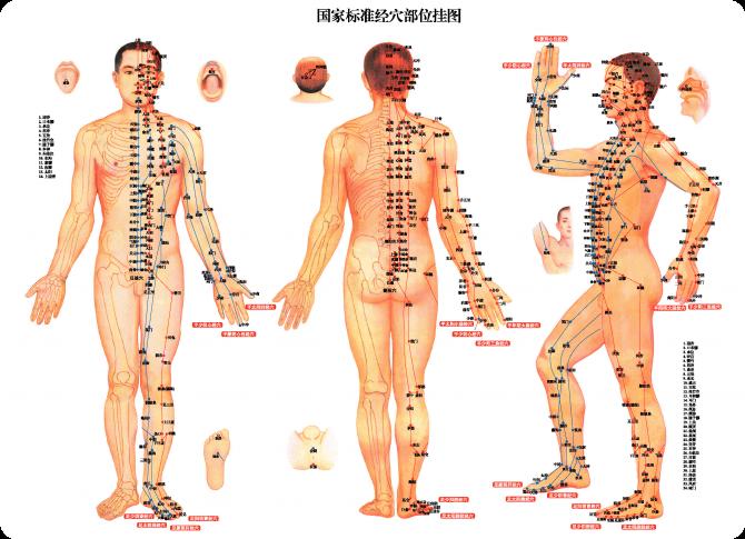 Эти 8 точкек на лице расскажут о здоровье  внутренних органов