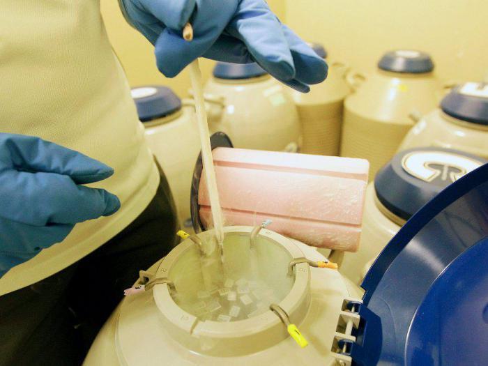 Зачем замораживать собственные яйцеклетки? Интересная информация о процедуре
