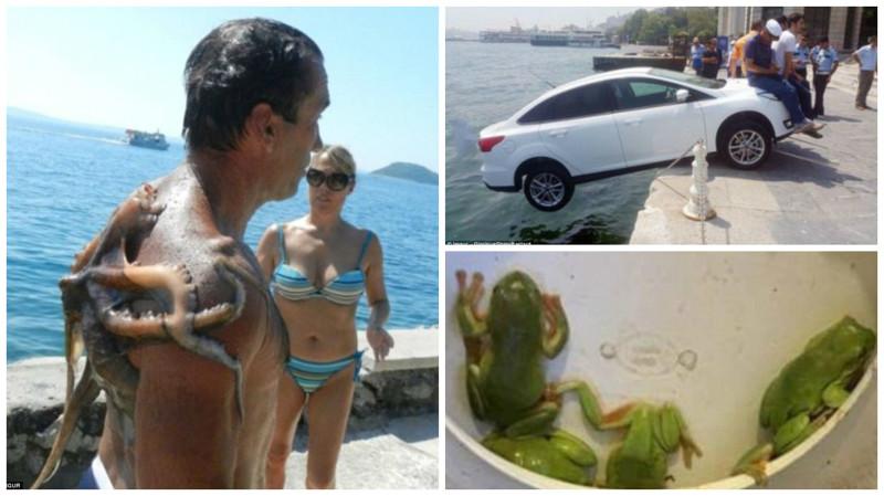 Отпуск изАда: фотографии изтурпоездок, вкоторых что-то пошло нетак