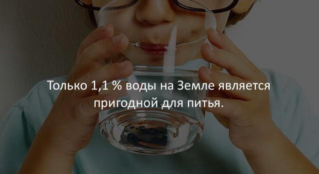 Занимательные факты