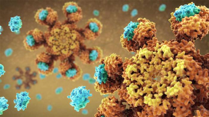 Почти две трети случаев рака вызваны случайными
