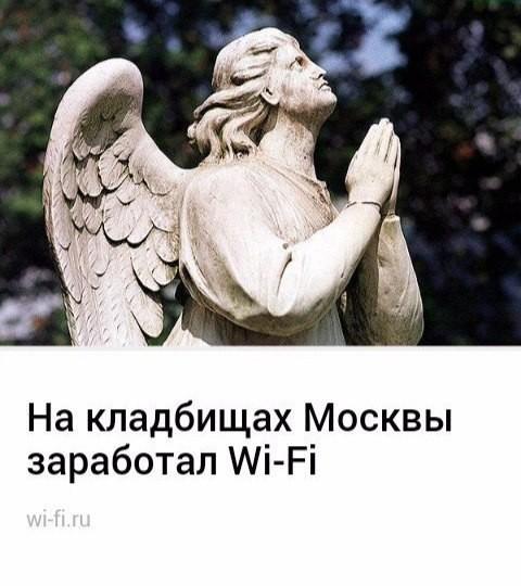 Кладбищенский юмор, который продлевает жизнь