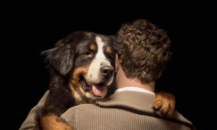 Собаки положительно влияют на наше здоровье. Как им это удается?