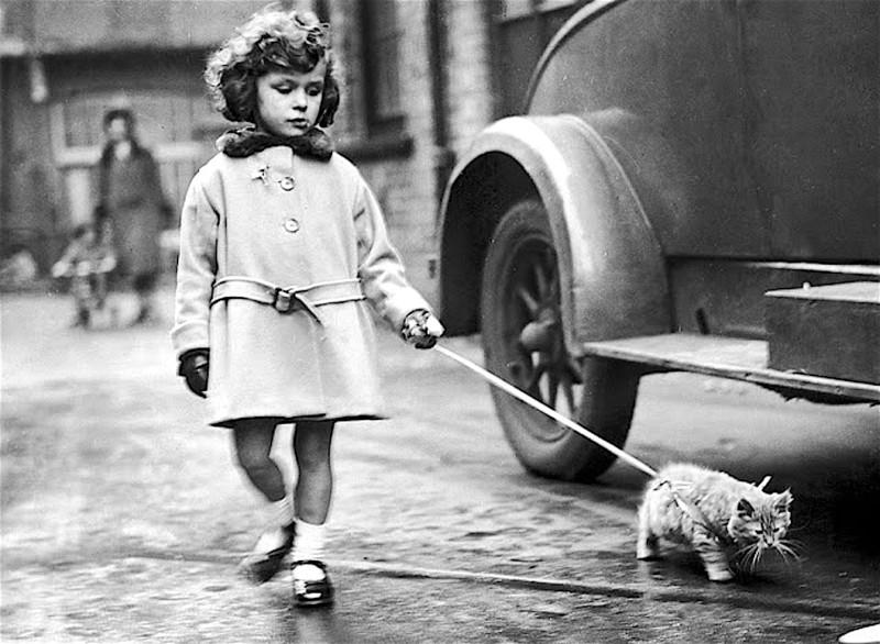 Машина времени. Лондон, 1930 год
