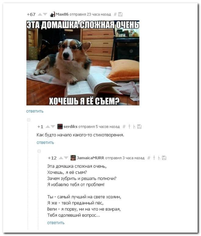 Смешные комментарии изсоцсетей