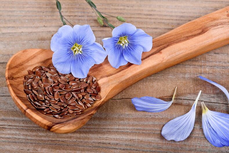 Что и как лечить семенами льна