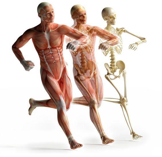5 характерных признаков воспаления в организме
