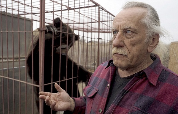 Кадры не для слабонервных! Жуткие скитания цирковых медведей, которые уже не могут участвовать в шоу.