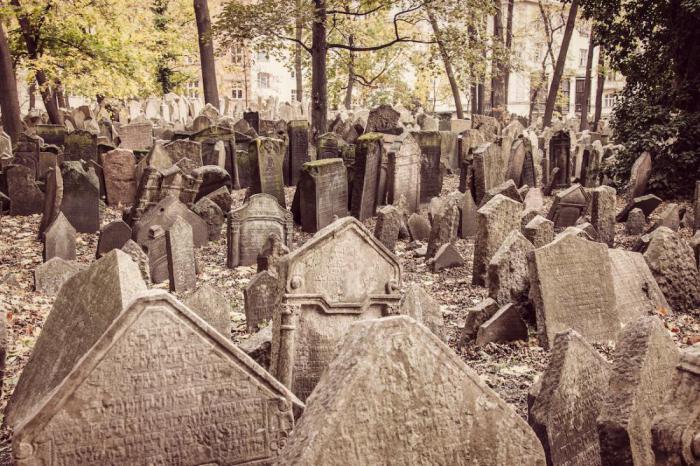 Таких кладбищ вы еще не видели
