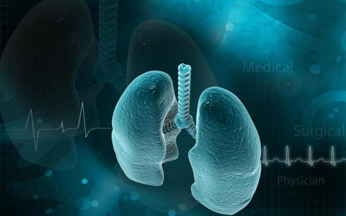 Ученые обнаружили секретную функцию легких