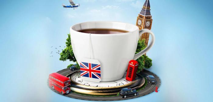 Чаевые в разных странах: то, что должен знать каждый турист