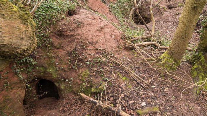 Под фермерским полем обнаружена огромная пещера, внутри которой находится храм тамплиеров