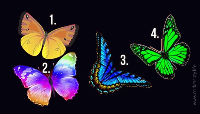 Нажмите на бабочку, которая вам понравилась, и узнайте тайны своей души!