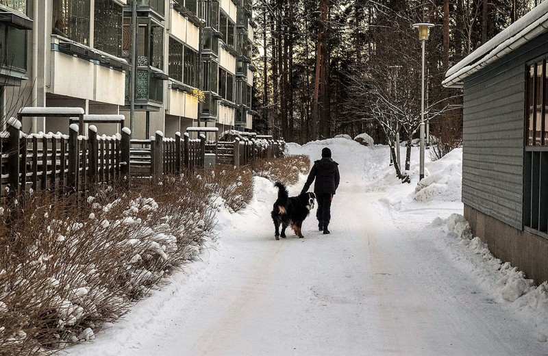 Какживут финские парни. Прогулка поспальному району