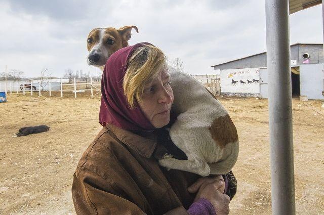 «Собака - все, чтоуменя есть». Беженка отказалась открова ради пса