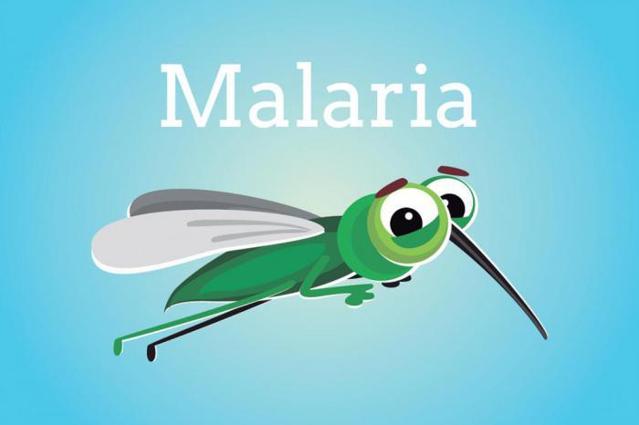 5 распространенных болезней, которые переносят комары