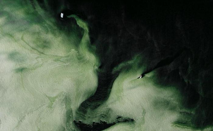 В море Росса возле Антарктиды замечен странный зеленый лед