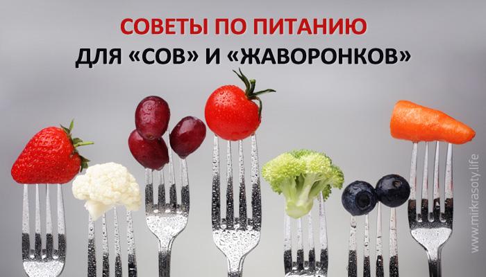 Особенности питания для «сов» и «жаворонков»