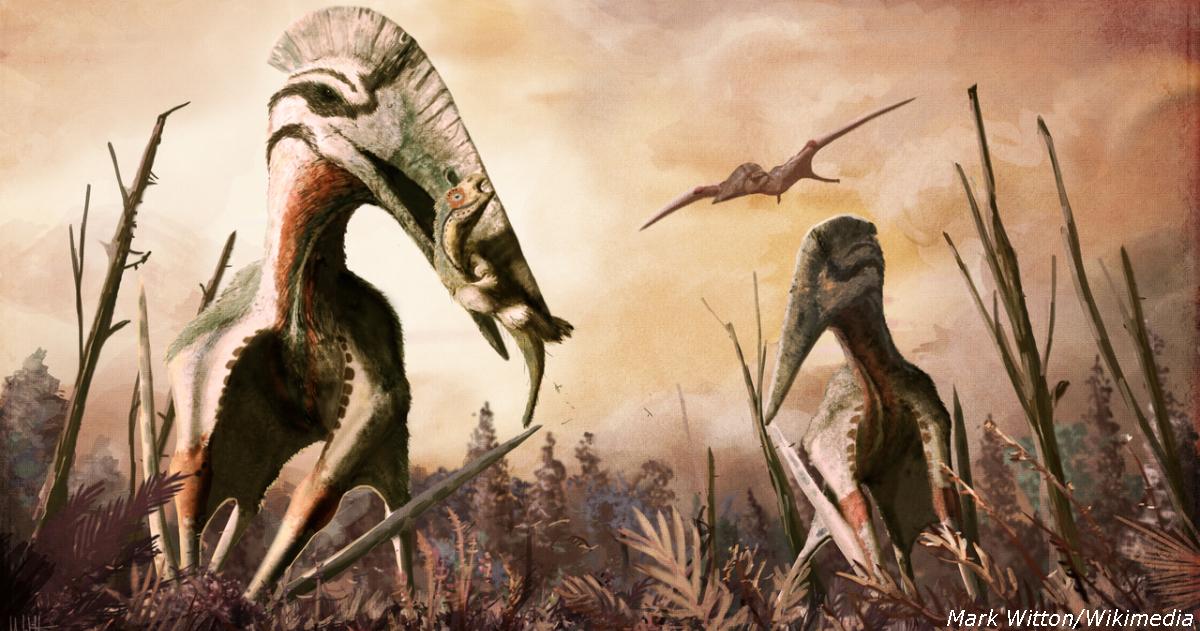 В Румынии нашли кости летающих динозавров, которые были размером с дом!