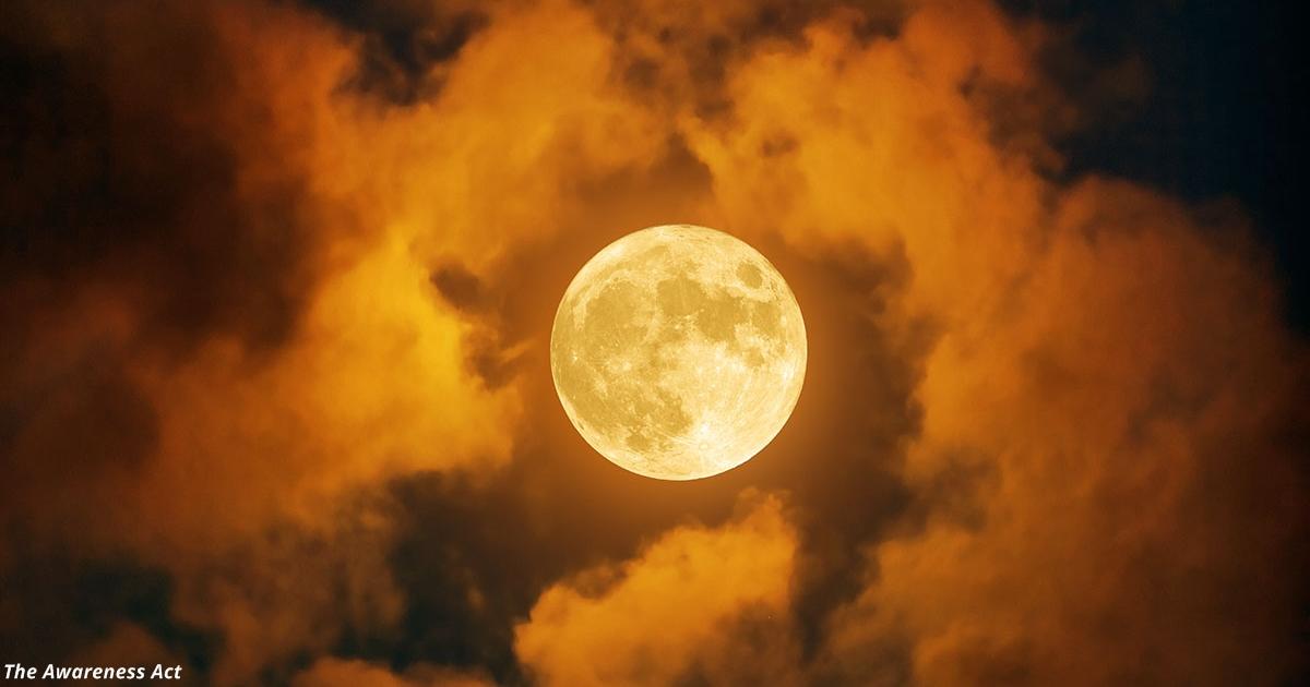Сегодня — день Осеннего Равноденствия! Вот почему астрологи обожают этот день