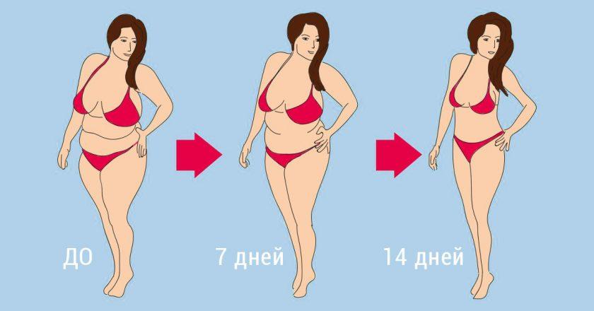 Похудение за 14 дней