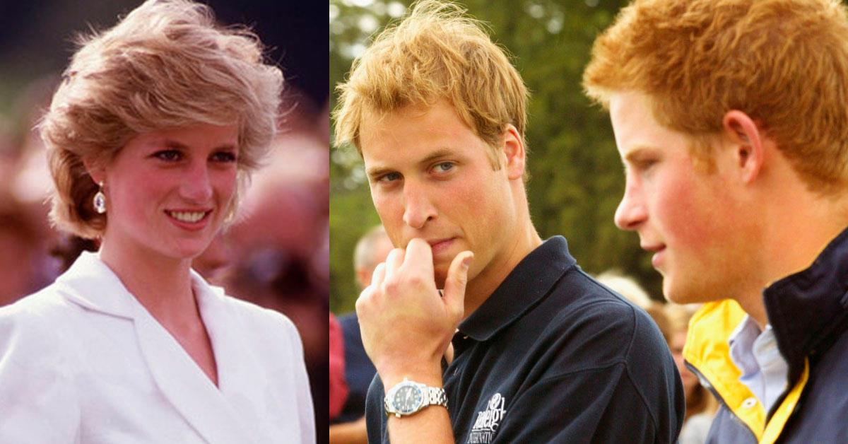 «Мы будем сожалеть об этом до конца жизни»: принц Уильям и Гарри рассказали о своём последнем разговор с матерью