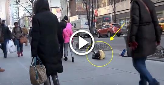 Полураздетый мальчик 2 часа мерз на улице при -15 °C. Вы не поверите, КТО пришел ему на помощь!