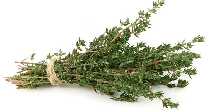 Трава, которая лечит более полусотни недугов — дар Бога!
