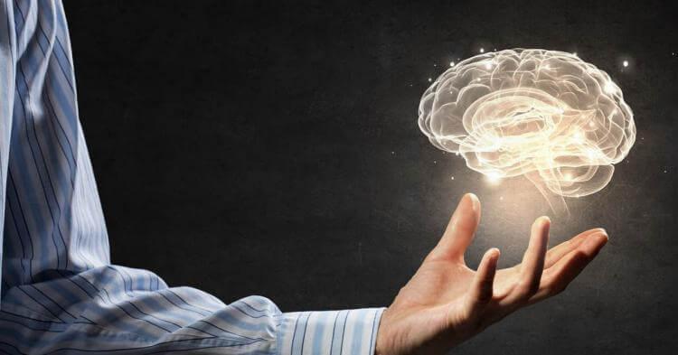 Деградация мозга, и как это остановить