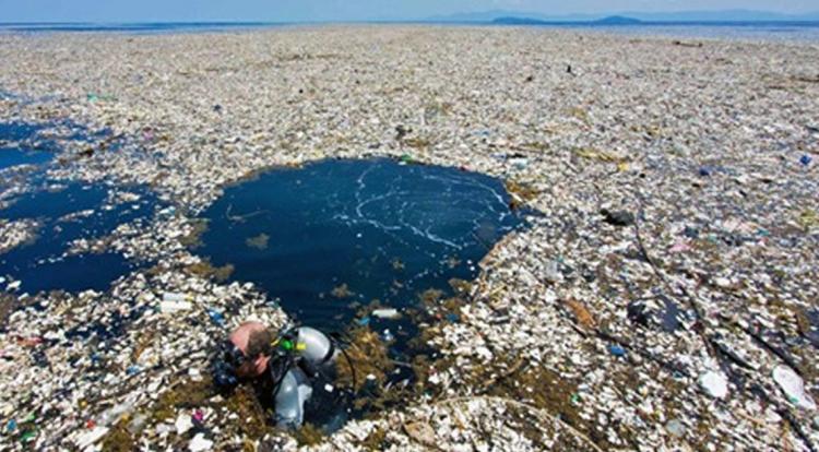 Куда катится мир: в Тихом океане плавает «Мусорный остров», весом в 3,5 млн тонн