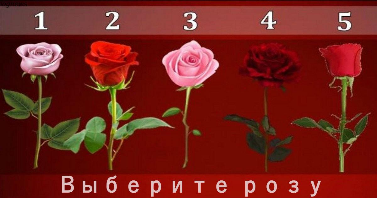 Выберите розу и узнайте, когда ваше желание сбудется