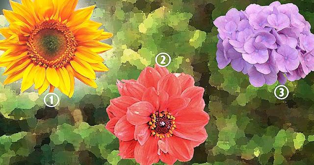 Вот что может рассказать о вашей личности выбранный вами цветок на этой картинке