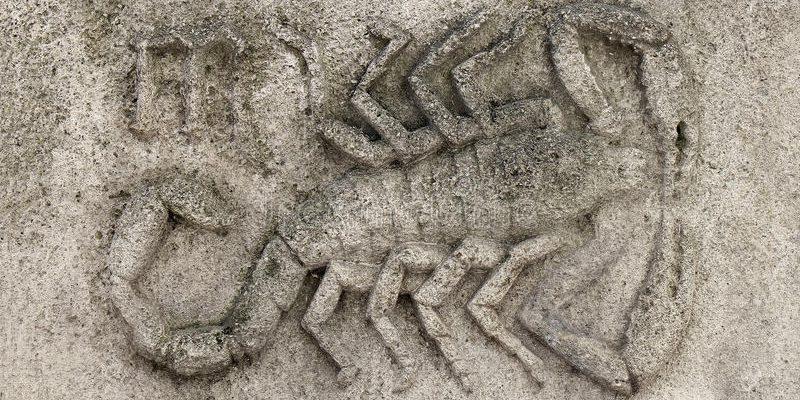 12 вещей, знать о которых должен каждый, кто любит Скорпиона