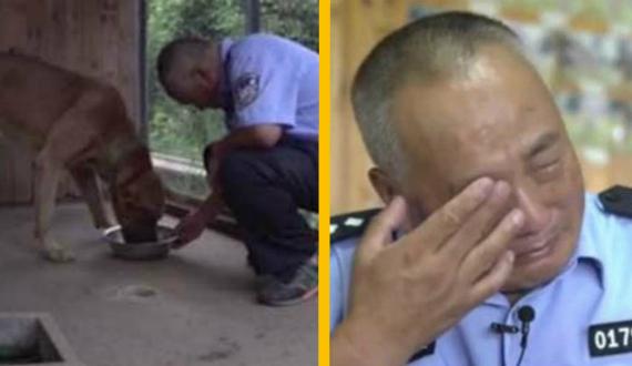Ветеринары советовали усыпить пса, но мужчина не смог предать друга