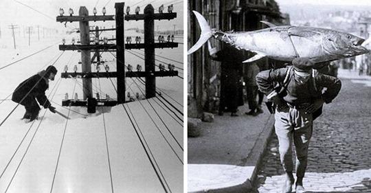 15 крутых ретро-фотографий из прошлого века, которые вы вряд ли найдёте в учебнике истории