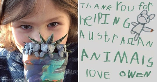 6 летний мальчик очень хотел помочь Австралии. Он стал лепить глиняных коал и собрал более 176 тыс. долларов
