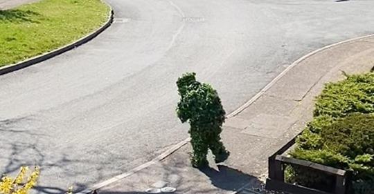 Чтобы не получить штраф, британец замаскировался, надев необычный костюм
