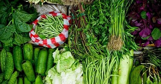 Вот что такое ваши «органические продукты»! У разбирающегося в химии человека накипело