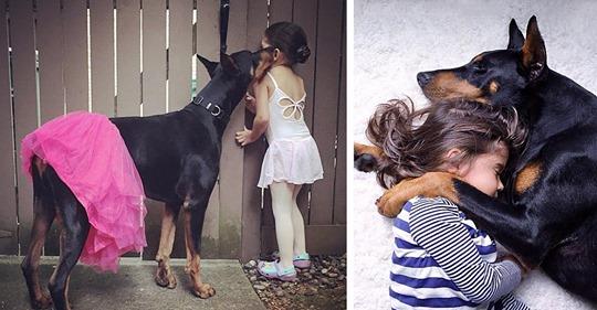 Маленькая девочка и большой доберман: история удивительной дружбы