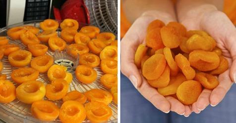 Как правильно сделать курагу из абрикоса в домашних условиях: вкусно и полезно
