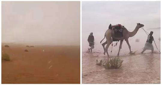 В ОАЭ в 50-градусную жару искусственно вызвали проливные дожди