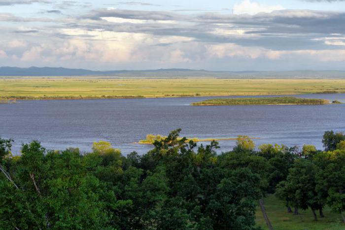 Исток реки Амур   один или несколько? Притоки и устье реки