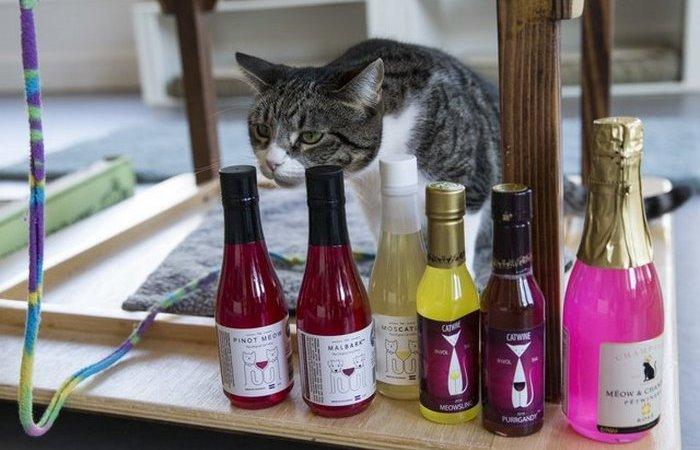«Тяпнем?»: в продажу поступили первые алкогольные напитки для домашних животных
