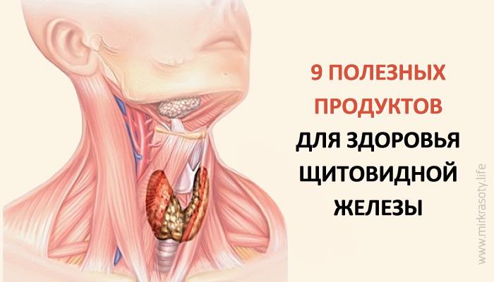 9 самых полезных продуктов для щитовидной железы